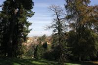 botanico_panorama