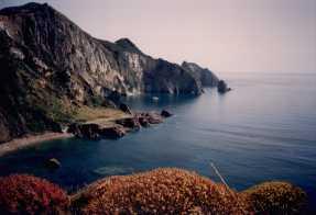 isole_pontine_palmarola_vista