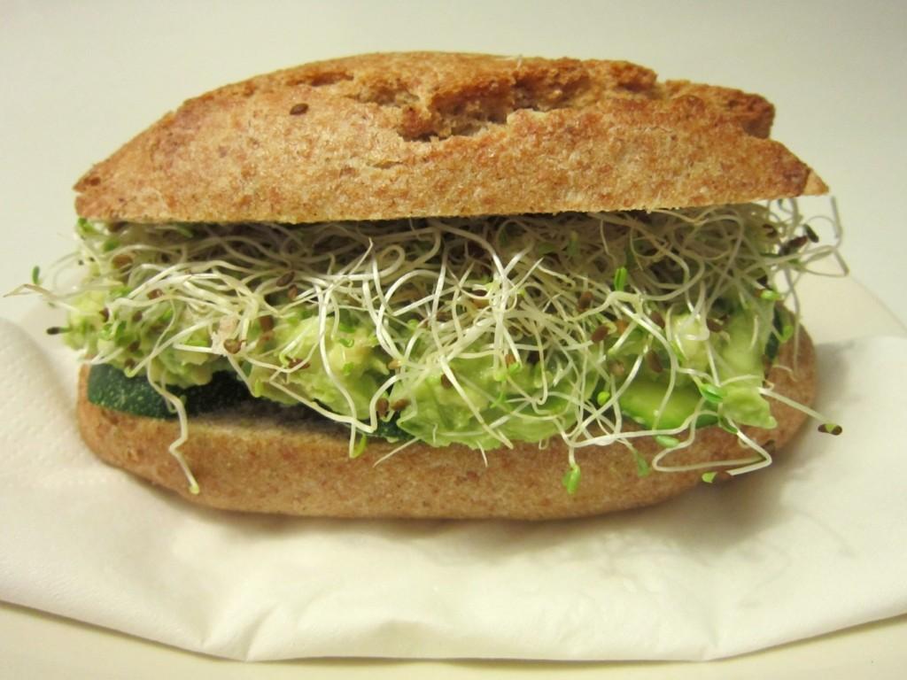panino alfalfa