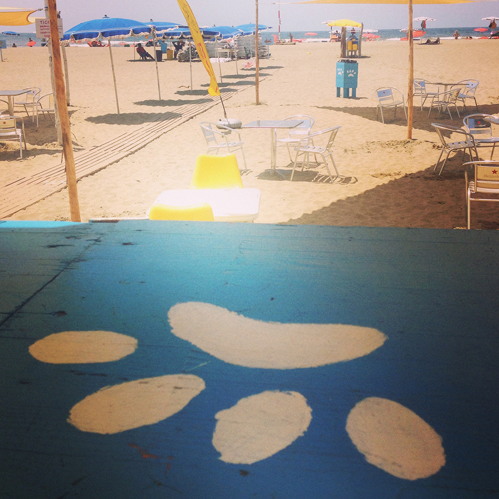 Maccarese_BAUBEACH_spiaggia_cani_Roma