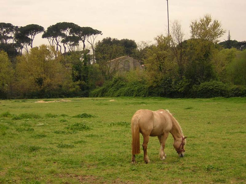 Galoppatoio_Villa.Borghese-Roma