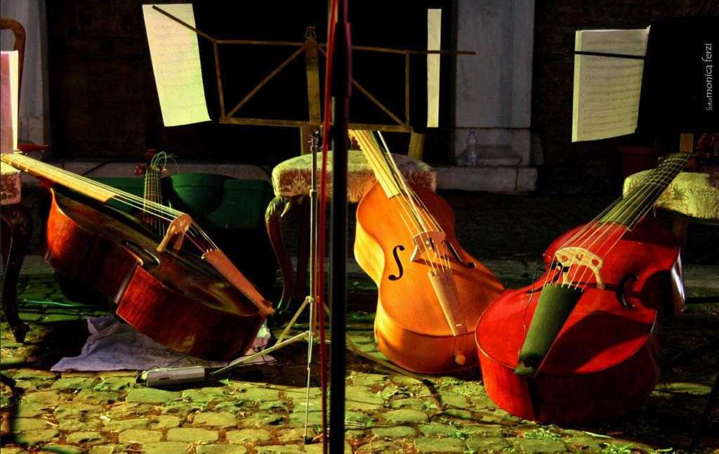 Violino-Viola.archi_strumenti-musicali
