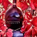 challinger_vino_spumante_brut_millesimato