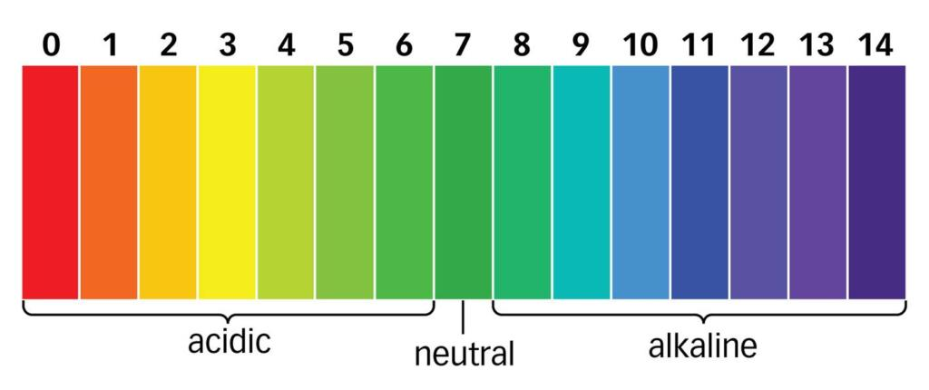 pH.scale_acidity-alkalinity
