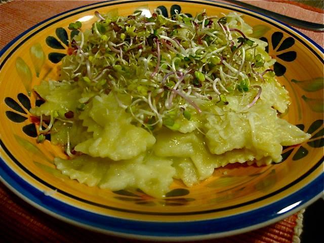 Ricetta_Pasta-Farfalle-crema-cavolfiore-germogli-di-ravanello